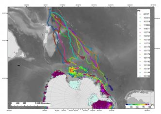 11 Jan 2016, Antarctic Southern Ocean feeding grounds